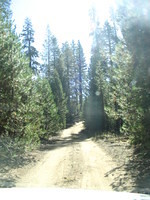 Dirt road to Fernandez Trailhead