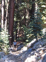 Mike climbing the rocky trail