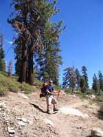 Tom near high point