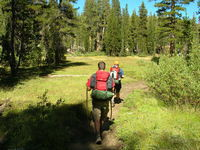Jason and Tom through meadows