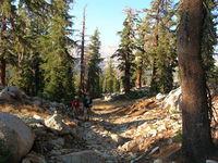 Ascending Timber Creek Trail