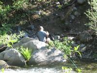 California 2005 043