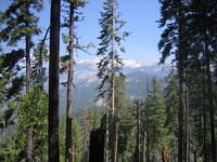 California 2005 068