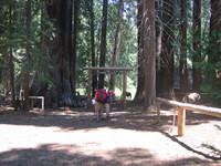 California 2005 074