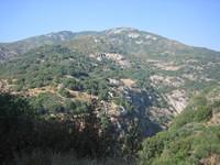 California 2005 158