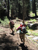 Tom and Mike hiking along stream