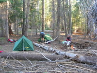 Little Sandy Meadow campsite
