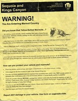 Marmot warning flyer
